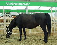 Horseshoe Deutsch