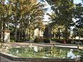 Amin al-Islami Park - Trees and Flowers - Nishapur 032.JPG