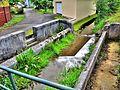 Ancien lavoir sur le ruisseau Varonne. (1).jpg