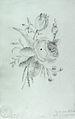 Antoinette - Šopek vrtnic.jpg