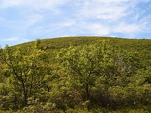 English: Peak of Bear Mountain (Connecticut). ...