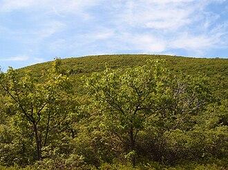 Bear Mountain (Connecticut) - Bear Mountain