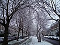 April snow Petherton Road Highbury London N5 - panoramio.jpg