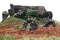 Aros Castle - geograph.org.uk - 477675.jpg