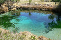 Ash Meadows Crystal Spring 1.jpg
