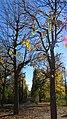 Augarten-Park 75.jpg
