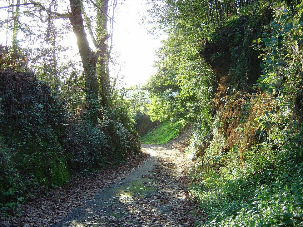 Autumn in Galicia 1. The way home