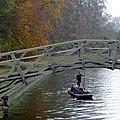 Autumn on the river, Cambridge - geograph.org.uk - 2705063.jpg