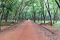 Bàu Cạn, Long Thành, Đồng Nai, Vietnam - panoramio (34).jpg
