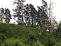 Bašķiņkalns - pilskalns 05.jpg