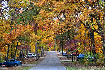 Babler SP campground-20131102-001.jpg