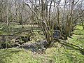 Backglen Burn - geograph.org.uk - 771278.jpg