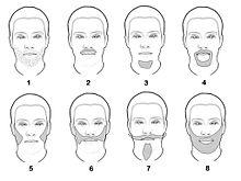 Fantastic Beard Wikipedia Short Hairstyles Gunalazisus