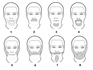 Beard - Different types of beards : 1) Incipient 2) moustache 3) goatee or Mandarin 4) Spanish style 5) long sideburns 6) sideburn joined by his mustache 7) Style Van Dyke 8) full beard.