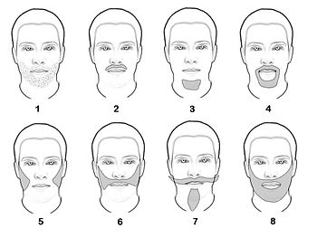 pictures of facial hair styles 髭のパターン 8731 | 350px Baerte ohne text