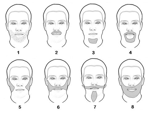 Facial hair growth rate for ethnicity
