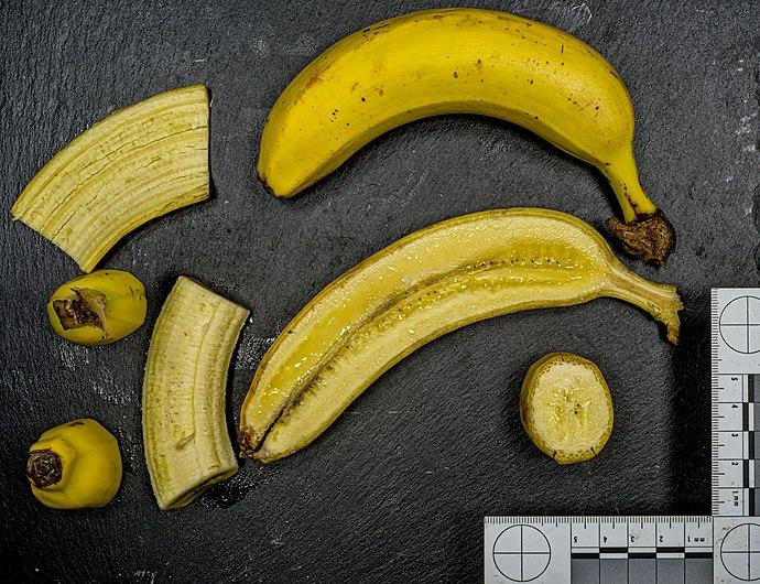 Banane (Frucht) jm98240.jpg