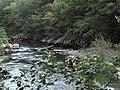 Banat, Nera Canyon - panoramio (27).jpg