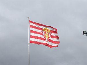 Sporting de Gijón - Real Sporting de Gijón's flag.