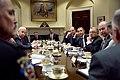 Barack Obama and Joe Biden at White House gun violence meeting.jpg