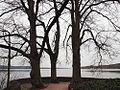 Barlachblick - Ratzeburger See im Winter - panoramio.jpg