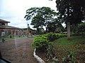 Bartira - Rolandia - Pr - panoramio.jpg
