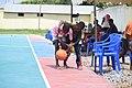 Basketball at Simiyu Tanzania 18.jpg