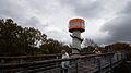 Baumkronenpfad Hainich Turm.jpg