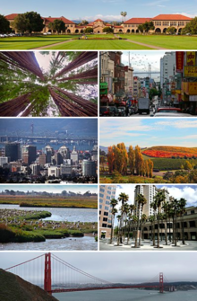 Bay Area Montage.png
