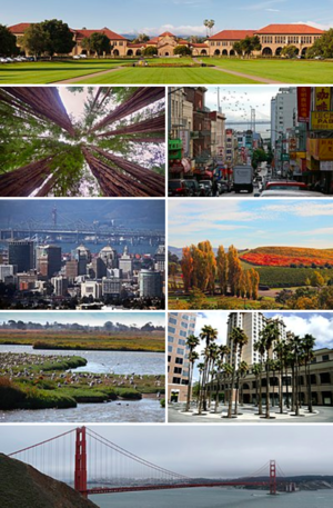 San Francisco Bay Area - Clockwise from top: The Stanford University Oval, San Francisco Chinatown with the Bay Bridge in the background, Napa Valley vineyards, the Circle of Palms Plaza in San Jose, the Golden Gate Bridge, the Palo Alto Baylands Nature Preserve, Oakland's downtown skyline, and redwood trees in Muir Woods