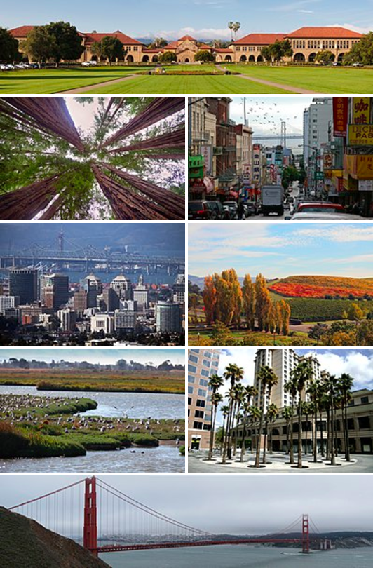 Clockwise from top: The Stanford University Oval, San Francisco Chinatown with the Bay Bridge in the background, Napa Valley vineyards, the Circle of Palms Plaza in San Jose, the Golden Gate Bridge, the Palo Alto Baylands Nature Preserve, Oakland's downtown skyline, and redwood trees in Muir Woods