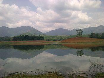 Beauty of mangalam, western ghats.jpg