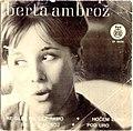 Berta Ambrož - Ne glej me čez ramo.jpg