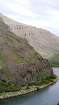 Bighorn-sheep--yakima-river-canyon 8682856576 o.png