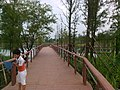 Binhu, Wuxi, Jiangsu, China - panoramio (269).jpg