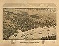 Birds eye view of Jacksonville, Fla. LOC 75693180.jpg