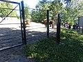 Bison bonasus in Korkeasaari.jpg