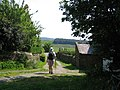 Bland Hill - geograph.org.uk - 17649.jpg