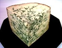 Stilton cheese contains edible mold.