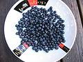 Blueberries (3084735551).jpg