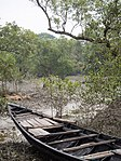 Boat in the Mangroves (16597122592).jpg