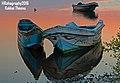 Boat love.jpg
