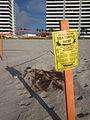 Boca Turtle nests sign.JPG