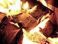 Book burning (3).jpg