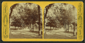 Boston Common, from Robert N. Dennis collection of stereoscopic views 4.png