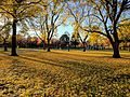 Boston Common in the fall 04.jpg