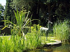 Botanischer Garten in Gießen.jpg