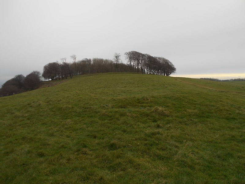File:Bowl barrow on Chanctonbury Hill 04.jpg