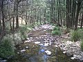 Bowman River Barrington Tops.jpg