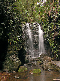 Box Log Falls, Lamington National Parc a Queensland